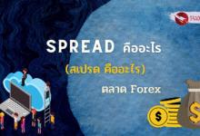 Spread คืออะไร